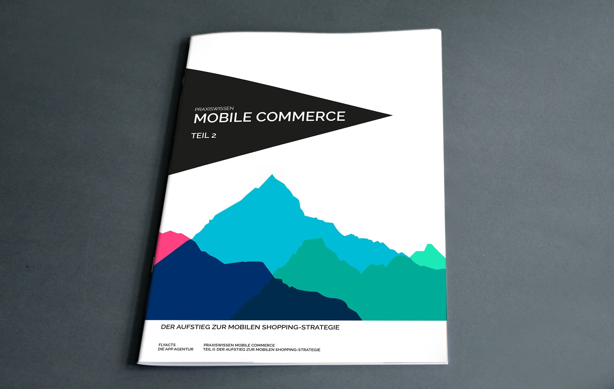 Praxiswissen Mobile Commerce Teil 2