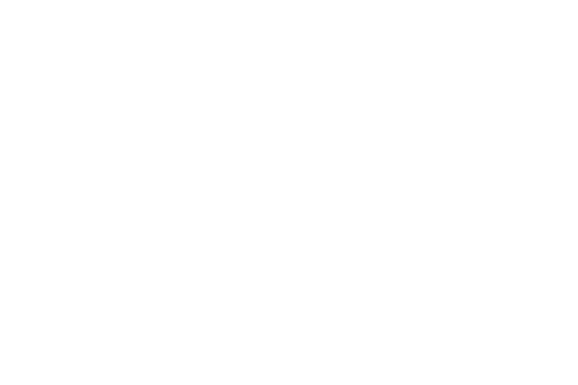 Online Marketing Manager (w/m)