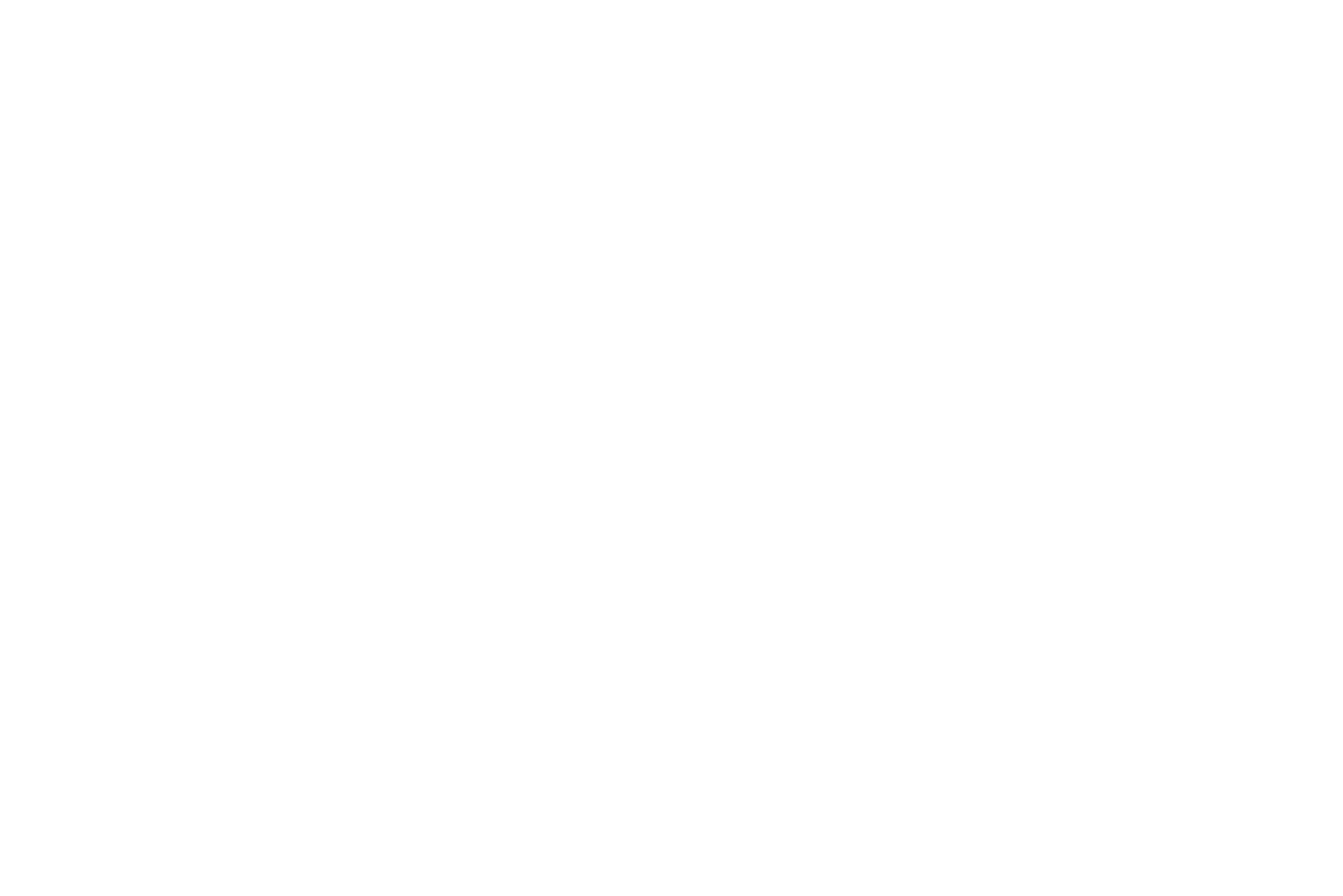 Scrum Master / Agile Coach (w/m)